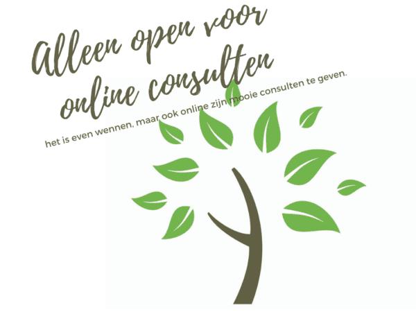Alleen online consulten